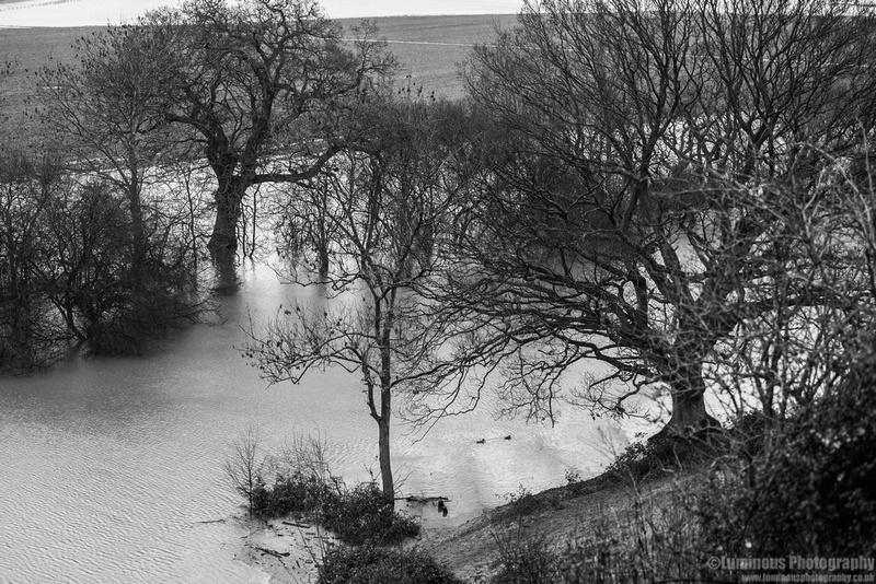 flood110214jpeg-1002