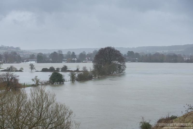 flood110214jpeg-1003